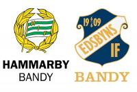 Hammarby Bandy Edsbyn